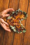 Руки дамы создавая в форме сердц осенние листья Стоковое Фото