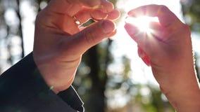 Руки держат кольца близкий против лучей солнца Оценивающ ювелирные изделия или получающ женатый сток-видео
