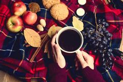 Руки держа осени предпосылки виноградины циннамона печений Яблока чашки кофе взгляд сверху концепции образа жизни осени одеяла де Стоковая Фотография RF