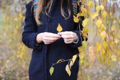 Руки девушки с листовкой осени Стоковая Фотография RF