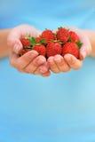 Руки держа свежие клубники Стоковое Фото