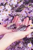 Руки держа солнечные очки с предпосылкой цветков Стоковые Изображения