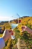 2 руки держа wineglases Стоковое Изображение
