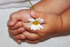 Руки детей маленькие Стоковые Изображения