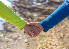 Руки детеныша поженились пары, идя через древесины в предыдущей весне Стоковое Фото