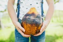 Руки женщины держа кокос outdoors Стоковые Изображения