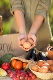 Руки женщины показывая 3 яичка стоковые изображения