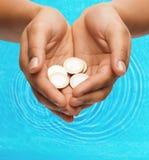 Руки женщины приданные форму чашки показывая монетки евро Стоковые Изображения RF