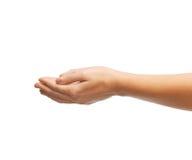 Руки женщины приданные форму чашки Стоковая Фотография RF
