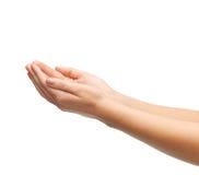 Руки женщины приданные форму чашки Стоковая Фотография