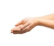Руки женщины приданные форму чашки Стоковые Фото