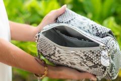 Руки женщины с роскошной handmade сумкой питона snakeskin Красивая азиатская предпосылка Стоковое фото RF