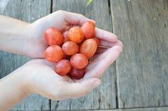 Руки женщины с свеже сжатыми красными виноградинами на деревянном backgr Стоковое фото RF
