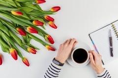 Руки женщины с чашкой кофе, открытой бумажной тетрадью и красивыми цветками на белой таблице Стоковое фото RF
