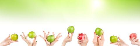 Руки женщины установили с яблоками на абстрактной зеленой предпосылке стоковое изображение rf