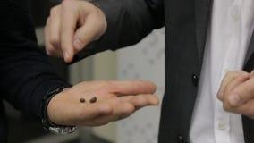 руки зерен кофе предпосылки изолировали белизну сток-видео