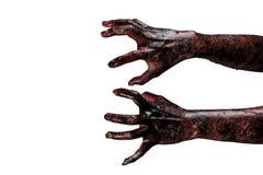 Руки зомби крови, тема зомби, тема хеллоуина Стоковая Фотография