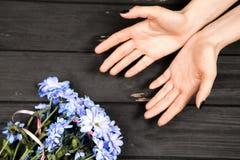 Руки и цветки ` s женщины Стоковые Изображения RF