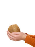 руки кокоса стоковые изображения rf