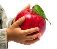 руки красный s детей яблока Стоковая Фотография RF