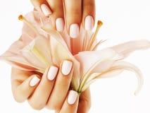 Руки красоты чувствительные при маникюр держа конец лилии цветка вверх изолированный на белизне Стоковые Изображения RF