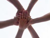 Руки крупного плана объединенные на белой предпосылке Объединенный, приятельство, Te стоковые изображения