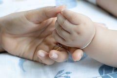 Руки младенца в руках матери ребенок ее мама семья принципиальной схемы счастливая стоковые фото