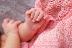 Руки младенца на розовой предпосылке Стоковые Изображения RF