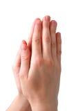 руки моля Стоковое Фото