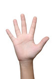 Изолят руки Стоковое Изображение RF