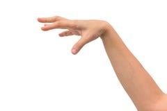 Руки на изолированной предпосылке стоковое фото