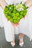 Руки невесты держа валик для колец хризантемы в форме сердца Стоковое Изображение RF
