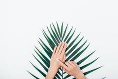 Руки плоской положенной женщины состава прикладывают косметическую сливк стоковое изображение