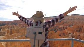 Руки поднятые женщиной вверх пока стоящ на каньоне смотровой площадки обозревая Стоковые Изображения RF