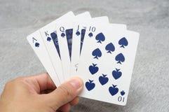 Руки покера королевского притока стоковые фотографии rf