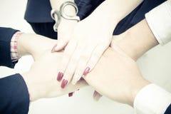 Руки предпринимателей штабелируя совместно над белой предпосылкой Стоковая Фотография