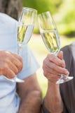 Руки провозглашать каннелюры шампанского на парке Стоковое Изображение RF