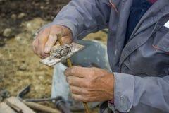 Руки работника построителя работая на элементе рамок утюга Стоковое Изображение