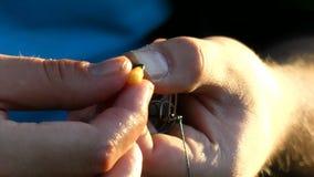 Руки рыболовов подготавливают мозоль для рыб видеоматериал