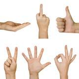 руки собрания Стоковое фото RF