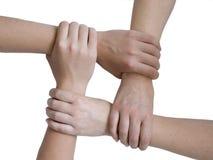 руки соединили Стоковая Фотография RF