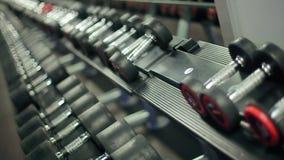 Руки спортсменки принимая тяжелые гантели сток-видео
