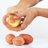 Руки слезая картошки на белой предпосылке Стоковое Изображение RF