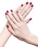 Руки с красным маникюром стоковое изображение