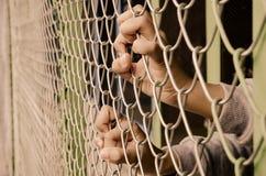 Руки с стальной загородкой сетки Стоковое фото RF