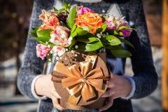 Руки с цветками в коробке Стоковое фото RF