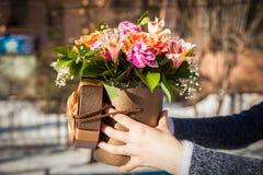 Руки с цветками в коробке Стоковая Фотография RF