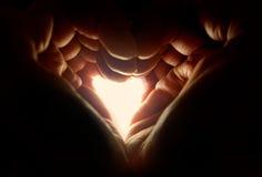 Руки формируя ofheart формы при свет shinning до конца Стоковая Фотография RF