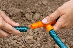 Руки шлангов сада садовника соединяясь, крупного плана Стоковые Фотографии RF