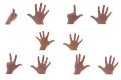 руки Стоковое Изображение RF